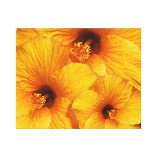 Impresión anaranjada de la lona de la flor del hib impresión en lienzo estirada