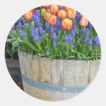 Impresión anaranjada del plantador del tulipán de pegatinas redondas