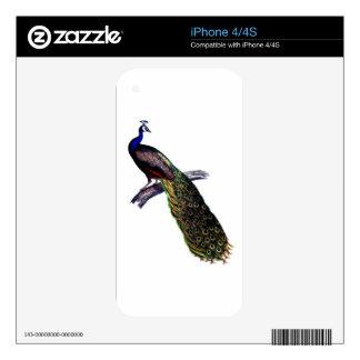 Impresión antigua del pavo real skin para el iPhone 4S