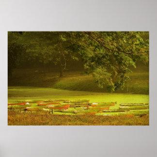 Impresión archival de la sonata del otoño impresiones