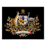 Impresión australiana del escudo de armas poster