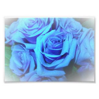 Impresión azul de la foto de los rosas cojinete