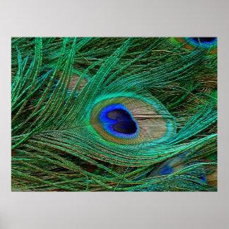 Impresión azul india del poster de la pluma del pa