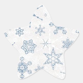 Impresión azul y de plata elegante del copo de pegatina en forma de estrella