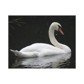 Impresión blanca agraciada de la lona del cisne impresión de lienzo
