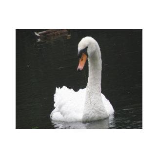 Impresión blanca de la lona del cisne impresiones en lona estiradas