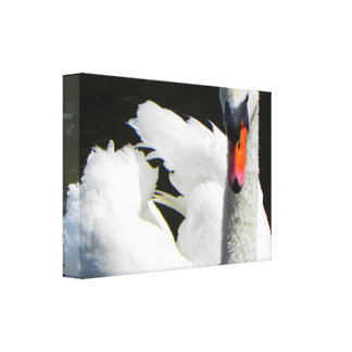 Impresión blanca de la lona del cisne lona envuelta para galerías