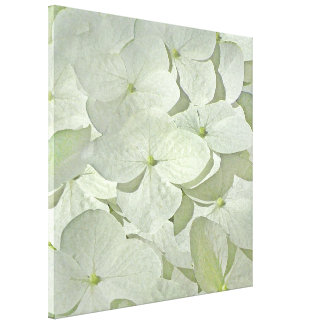 Impresión blanca de la lona del Hydrangea Lienzo Envuelto Para Galerias