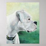 Impresión blanca del arte del perro del boxeador posters