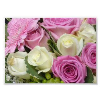 Impresión blanca y rosada de la foto de los rosas fotografías