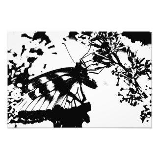 Impresión blanco y negro abstracta de la mariposa impresión fotográfica