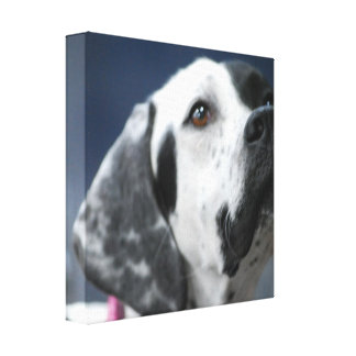 Impresión blanco y negro de la lona del perro del  impresión en lienzo estirada