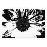 Impresión blanco y negro del girasol arte con fotos