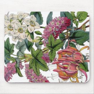 Impresión botánica de la flora blanca rosada del alfombrillas de ratón