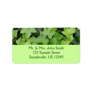 Impresión botánica de la hiedra verde etiqueta de dirección