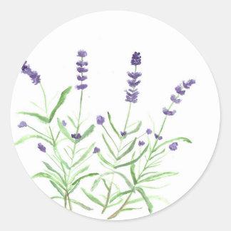 Impresión botánica de la hierba de la lavanda pegatina redonda
