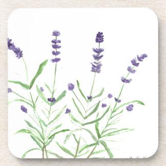 Impresión botánica de la hierba de la lavanda posavaso