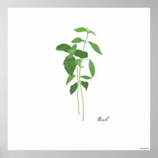 Impresión botánica de la hierba del ejemplo el | impresiones