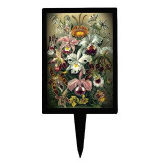 Impresión botánica de la orquídea del vintage figuras de tarta
