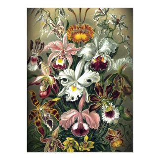 Impresión botánica de la orquídea del vintage invitación
