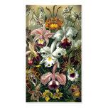 Impresión botánica de la orquídea del vintage tarjeta de visita