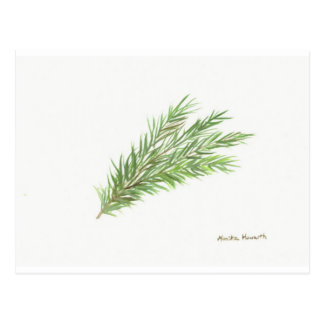 Impresión botánica del arte de la planta de la postal