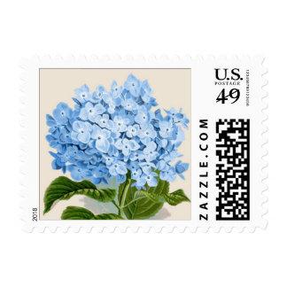Impresión botánica del Hydrangea azul Estampilla