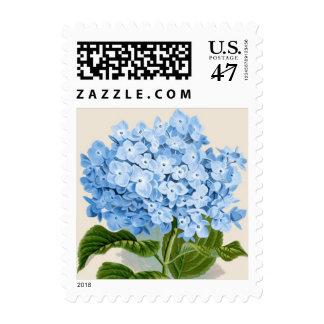 Impresión botánica del Hydrangea azul Sello