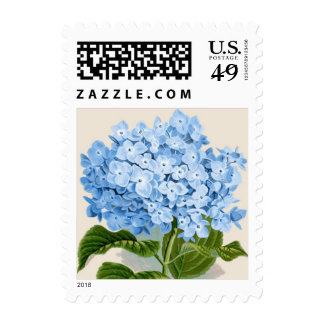 Impresión botánica del Hydrangea azul - sello
