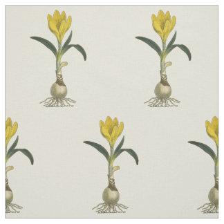Impresión botánica del jardín del vintage del telas