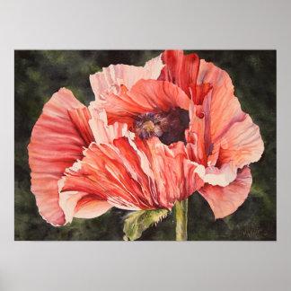 Impresión botánica rosada de la lona del poster de