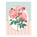 Impresión botánica subió rosa del collage del vint tarjetas postales