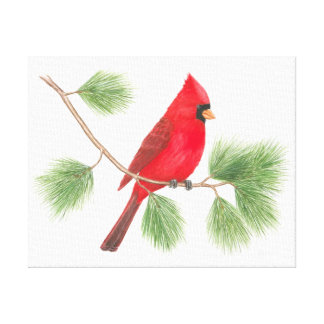 Impresión cardinal septentrional de la lona impresión de lienzo