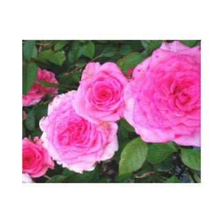 Impresión color de rosa antigua de la lona lona estirada galerías