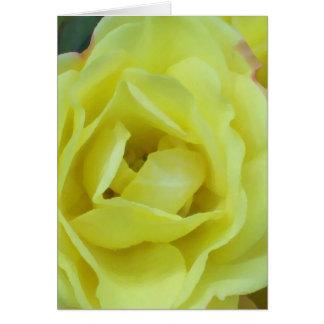 impresión color de rosa poner crema amarilla felicitacion
