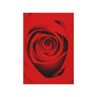 Impresión color de rosa roja sangre de la lona