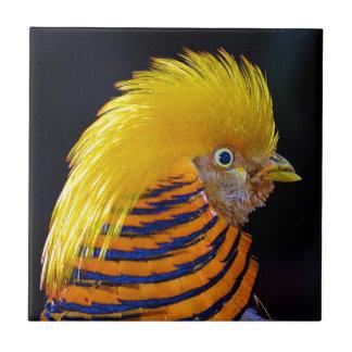 Impresión colorida del faisán de oro azulejo cuadrado pequeño