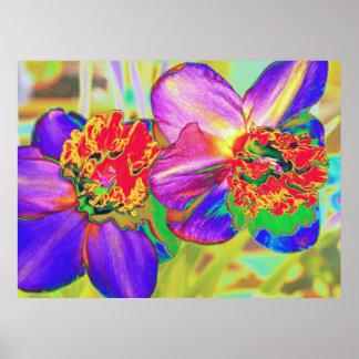 Impresión colorida del narciso impresiones