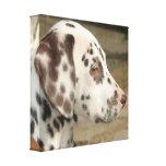 Impresión dálmata de la lona del perrito impresiones de lienzo