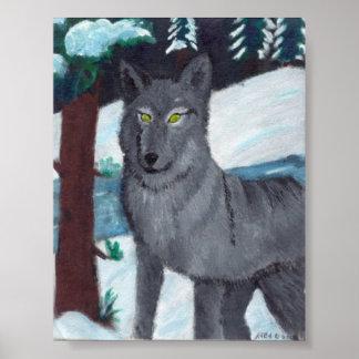 Impresión de acrílico del lobo posters