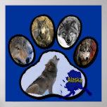 Impresión de Alaska de la pata del lobo Posters
