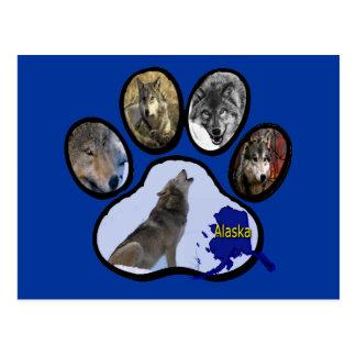 Impresión de Alaska de la pata del lobo Postal