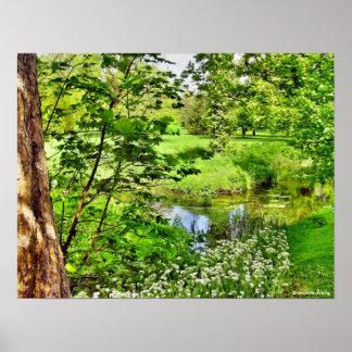 Impresión de Bosque verde de la lisonja Póster