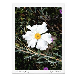 Impresión de color de la amapola espinosa/del saté cojinete