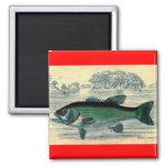 Impresión de color salmón antigua de la pesca de l iman para frigorífico