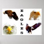 Impresión de Eagles Impresiones
