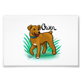 """Impresión de encargo de """"Owen"""" Fotografía"""