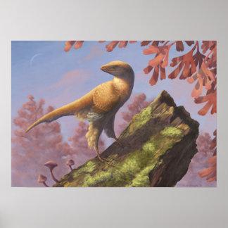 Impresión de Eosinopteryx Póster