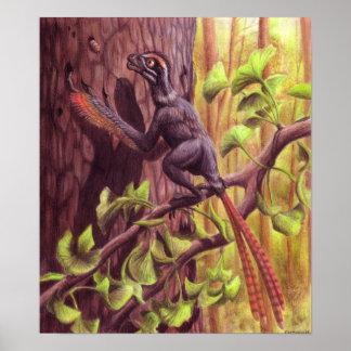 Impresión de Epidexipteryx Poster