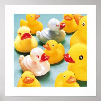 Impresión de goma del arte del cuarto de baño de D Póster
